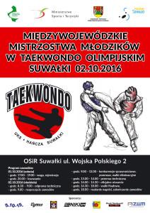 taekwondo_poster